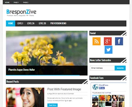 bresponzive theme wordpress gratis magazine