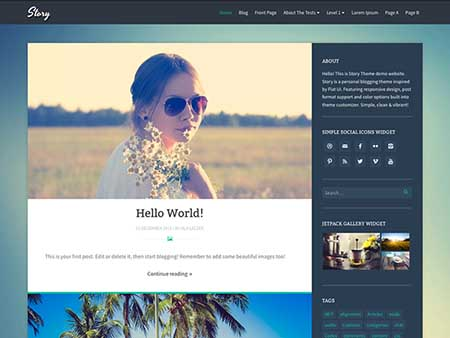 story theme wordpress responsive free download