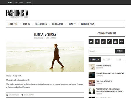 fashionista free wordpress theme download