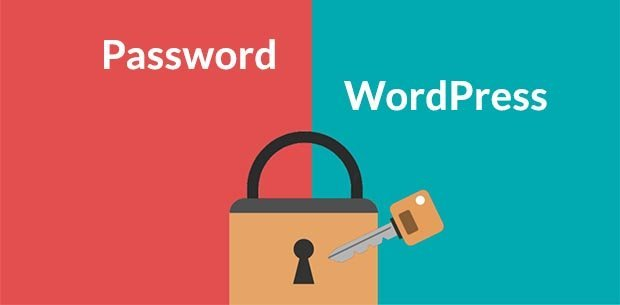 ganti-password-wordpress