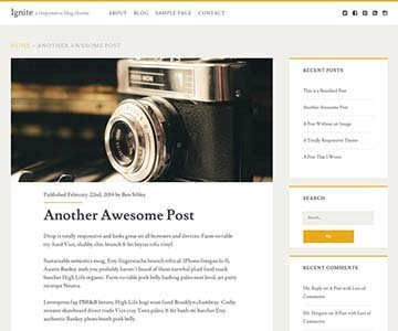 ignite free theme wordpress responsive