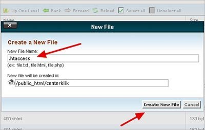 buat file htaccess File-Creation-in-cPanel
