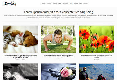 theme portfolio wembley wordpress free