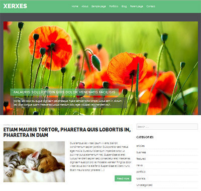theme traveling photographers wordpress free