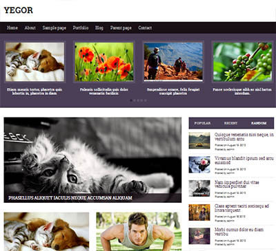 yegor theme responsive wordpress mgazine