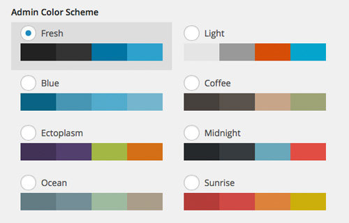 color-options wordpress