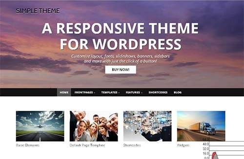 simple lite theme wordpress best design free
