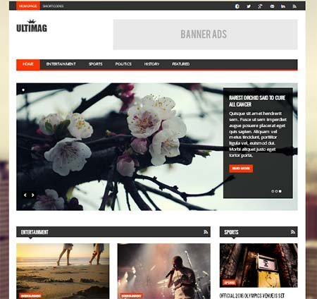 ultimag magazine blog wordpress theme free