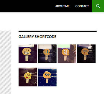 wordpress-widget-gallery-shortcode