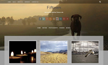 fifteen free wordpress theme download