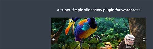 simple slideshow plugin slideshow wordpress