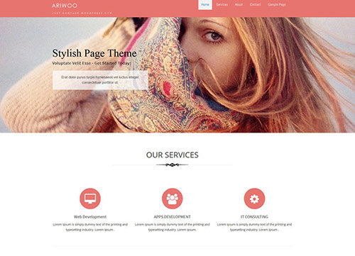 ariwoo theme wordpress free