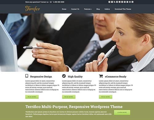 terrifico-wodpress-theme free