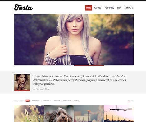tesla slide theme wordpress free