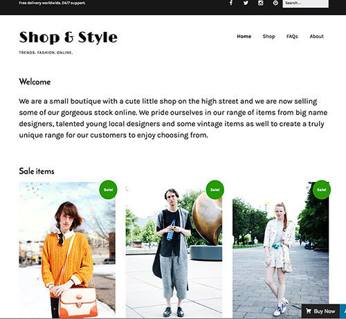 theme wordpress make ecommerce