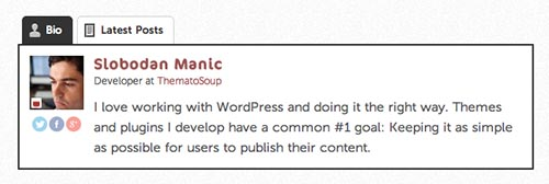 Fancier_Author_Box plugin author bio