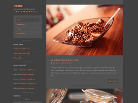 storto theme wordpress free