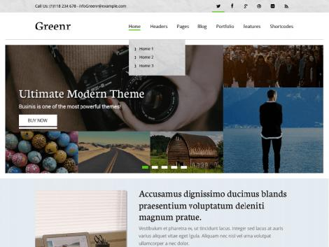 theme wordpress greenr free