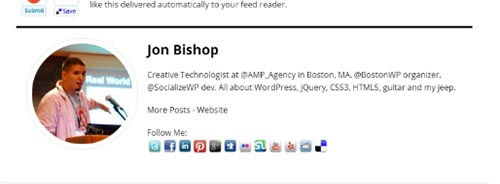 wordpress author about plugin author bio