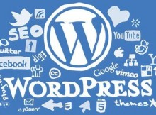 wordpress cover blue