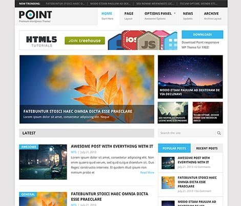 theme wordpress point responsive free