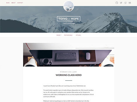 theme wordpress toivo free