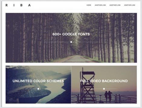 theme wordpress riba lite