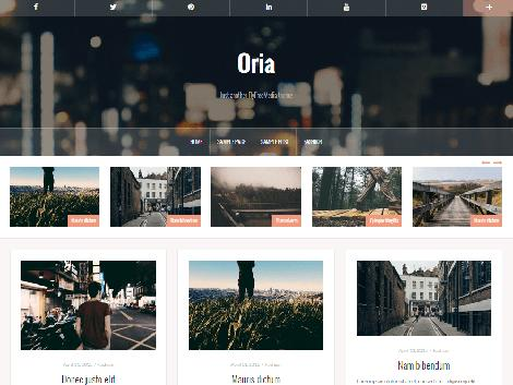 WordPress responsive free oria theme