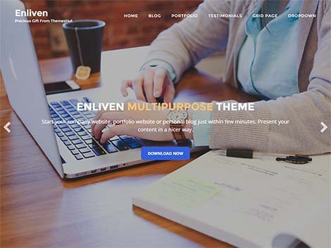enliven responsive wordpress free