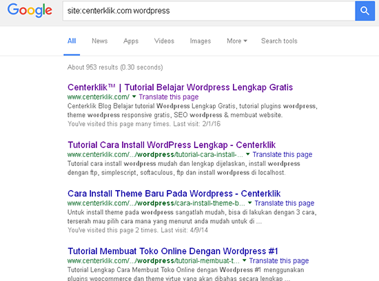 google search feature