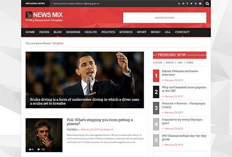 theme wordpress news mix lite