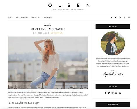 theme wordpress olsen light responsive free