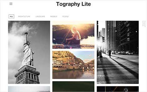 topography-lite wordpress