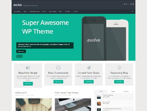 theme wordpress evolve responsive free