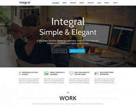 theme wordpress integral lite responsive free