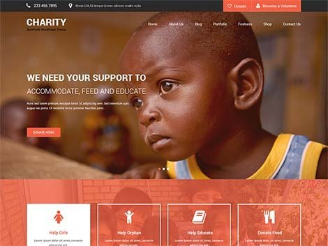 theme wordpress skt charity free