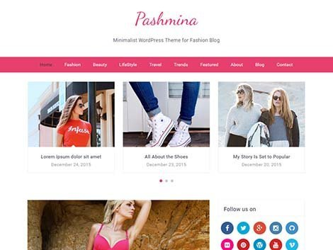 pashmina theme wordpress free