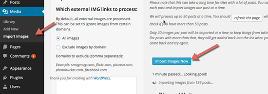 plugin import wordpress image