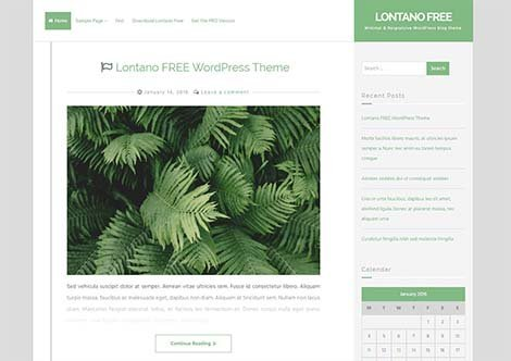 responsive lontano wordpress theme