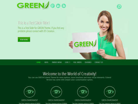 theme wordpress green eye