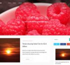 theme-wordpress-avalon-free