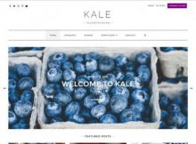 theme-wordpress-kale-free
