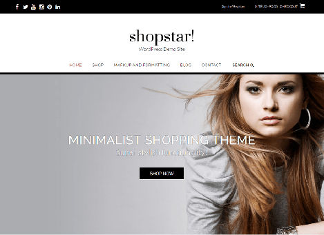 Theme WordPress Shopstar Responsive Free