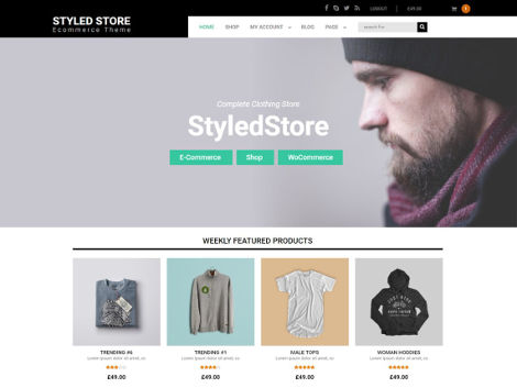 Styled Store Theme WordPress Free