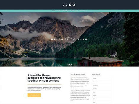 Theme WordPress Juno Responsive Free