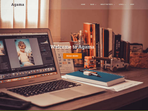 Theme WordPress Agama Responsive Free