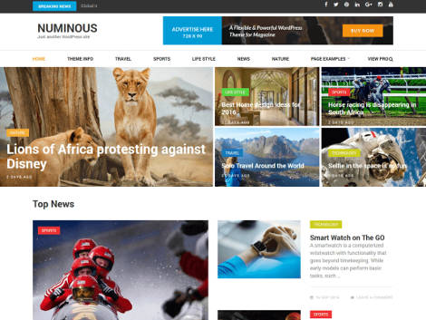 Theme WordPress Numinous Responsive Free