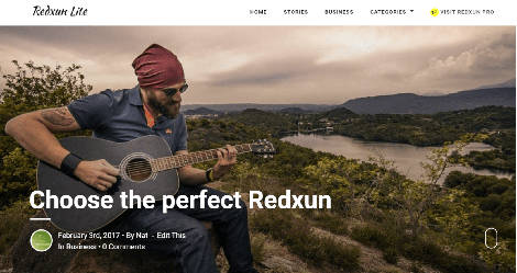 theme wordpress redxun lite free