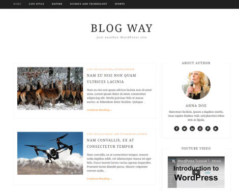 Theme WordPress Blog Way Responsive Free