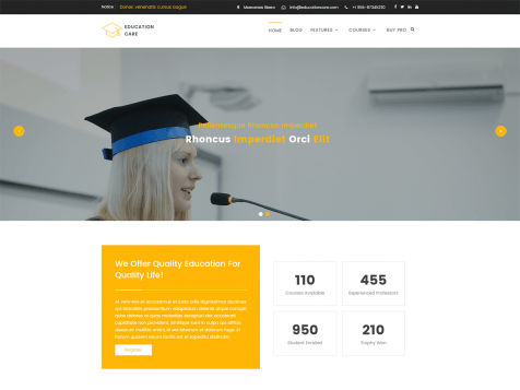Theme WordPress Education Care Free